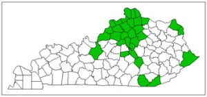 Figure 2. Known distribution of emerald ash borer in Kentucky (counties shaded green).
