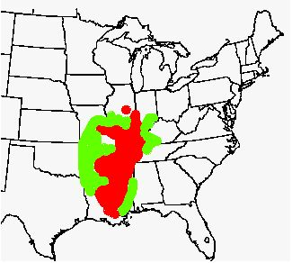 13-Year Periodical Cicada Brood May Be Seen in Northern ... on cicadas 2014 map, east coast cicada map, southern cicadas 2013 map, cicada emergence map, cicada cycle map, cicada map 2015, cicada in pa map, brood x brood map, 17 year locust map, cicada range map, cicada swarm map,