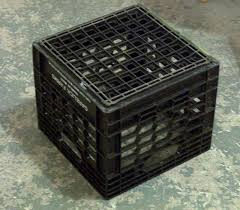 Figure 1. An SWD trap can be hung from an inverted milk crate in a strawberry field. (Photo: Ric Bessin)