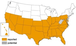 Figure 1. States with reported and potential incidences of the kissing bug (Source: Center for Disease Control).