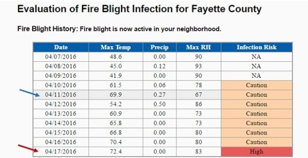 Figure 1: An example of a prediction model query for Fayette County on April 11, 2016. The blue arrow indicates the current date (date model was searched). Risk is based on weather from the previous 4 days. Note that conditions on April 11 were warm and wet, which are favorable for the fire blight pathogen. However, the previous days were cool and dry, which reduced overall risk for infection. The red arrow, on the other hand, indicates forecasted risk for a future date. It is based on temperature and moisture (in this case, humidity) forecasts for the 4 previous days.