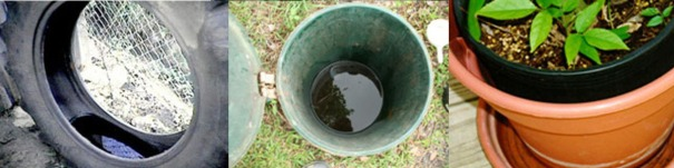 Figure 2. Top artificial containers that serve as mosquito breeding sites: tires, trash cans, and planter dishes. (Photo: Centers for Disease Control and Prevention)