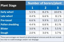 Table 1. Percentages of yield losses caused by European corn borers for various corn growth stages (modified from https://extension.entm.purdue.edu/publications/E-17.pdf)