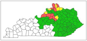 Figure 1. Known range of the emerald ash borer in Kentucky. (red = high ash mortality, yellow = moderate, green = detected in the county, white = not detected). (Source: Kentucky Division of Forestry & University of Kentucky records)