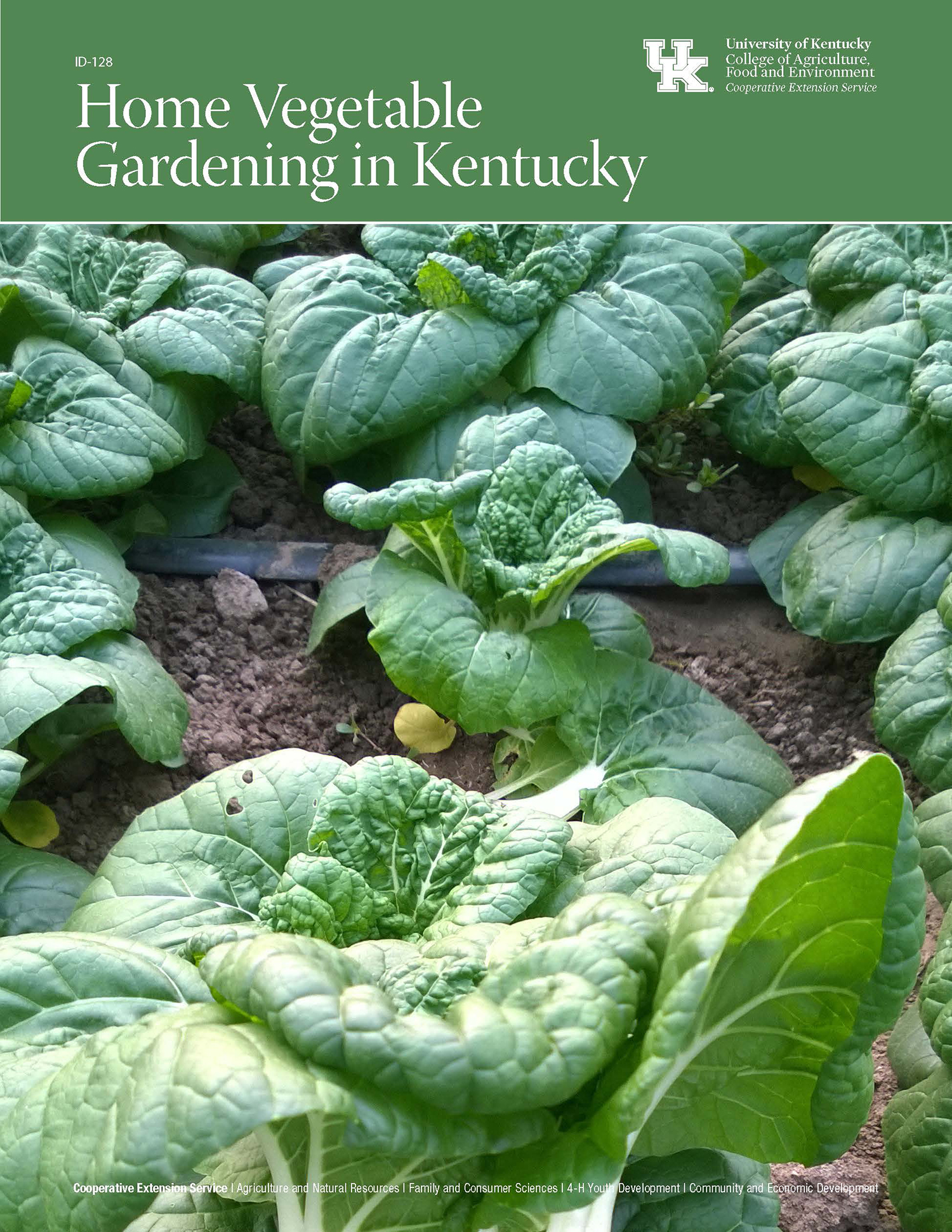 crop home mcbg calendar image inc sustainable past vegetable events chard series garden rainbow gardening slideshow